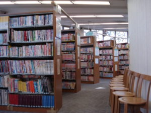 The Specialized Library Collects Only Manga