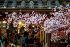 The different Ways of Enjoying Cherry Blossom Season
