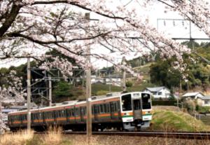 Comprar un abono de transporte: «teiki-ken»