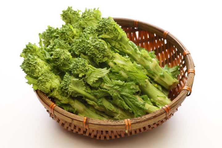 Japanese spring vegetables nanohana