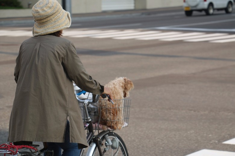 Important things to remember when biking in Japan