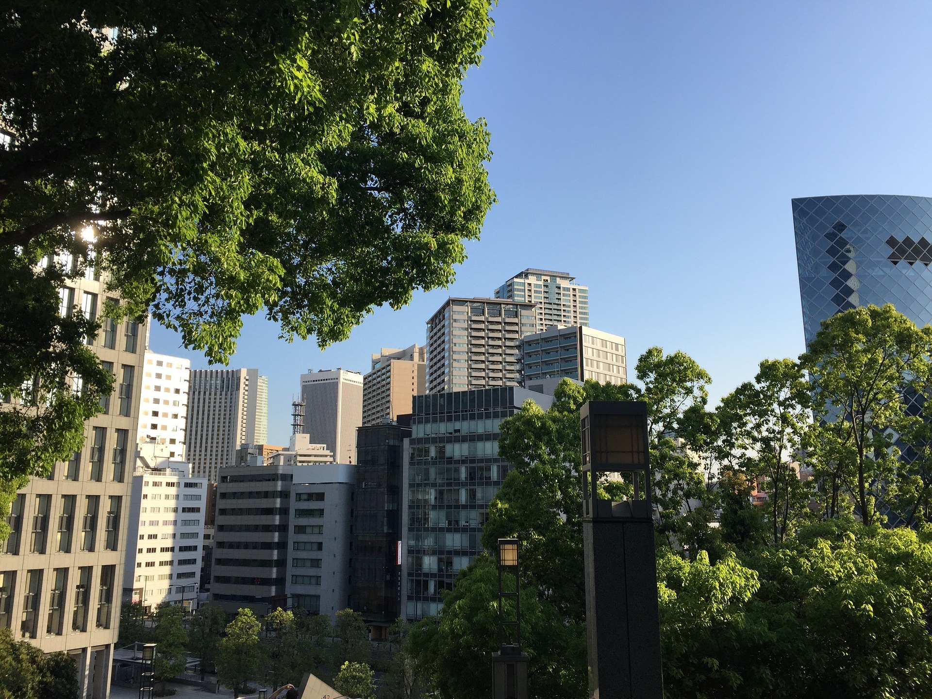 5 Best Jogging Routes in Tokyo