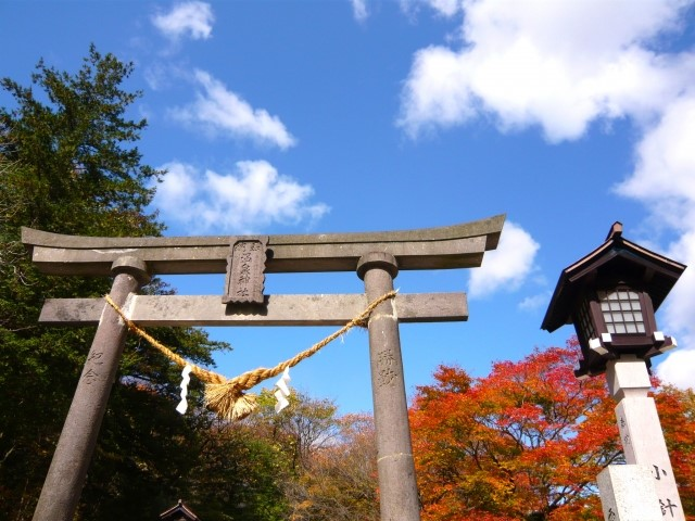 5 Must-See Autumn Spectacles in the Kanto Region