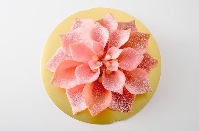 beautiful flower sweet