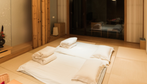 How the Japanese keep their traditional rooms freaking clean?!