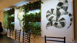 Mensaje para amantes de los reptiles: Snake cafe en Tokio