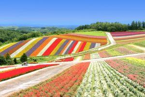 Where to Go on Vacation? (Part 7): Hokkaido Region