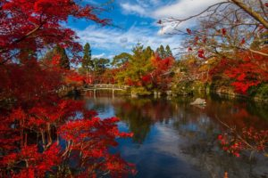 6 Festivals in Japan You Must See and Experience in Autumn