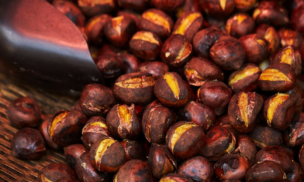 chestnut, kuri, marron all the names of chestnut in Japan and how to enjoy them