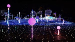 A Must-See! Top 5 Tokyo Illuminations in 2018