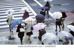 Umbrellas in Japan: Key things YOU need to know