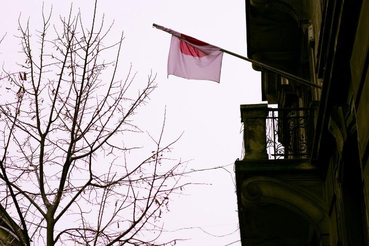 japan flag hanging national foundation day