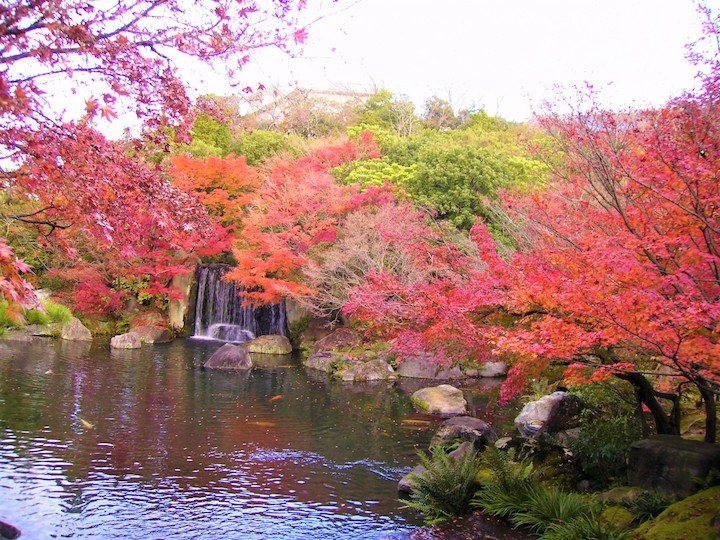 Autumn leaves Koko-en (Hyogo Prefecture, Kansai Region)