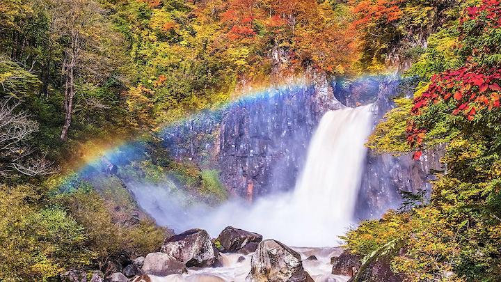 Naena Falls lotte autumn leaves