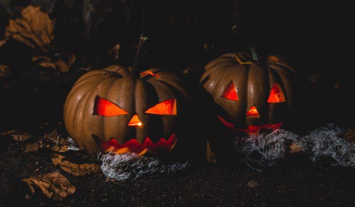 universal studios japan halloween pumpkins
