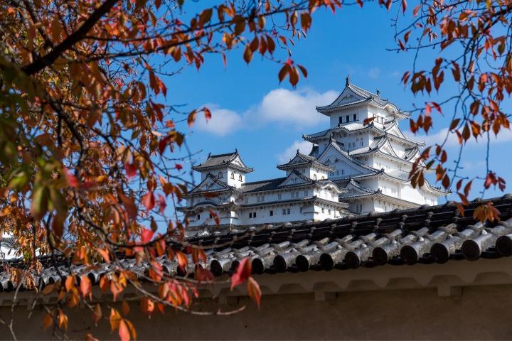 Goshuin, Castle, Japan, Autumn